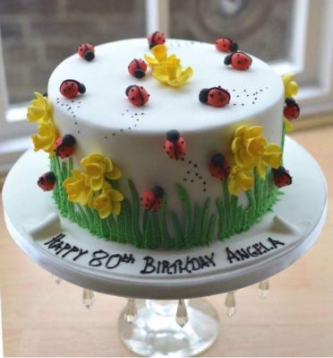 Lady birds birthday cake.
