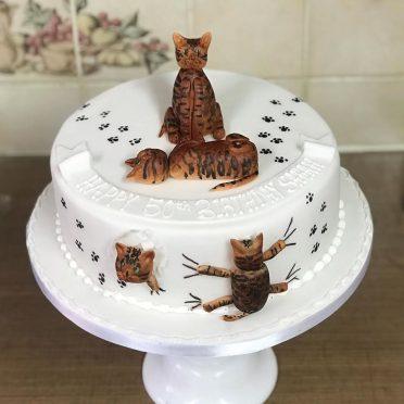Bengals cat cake