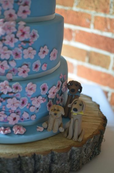 Close up of pets on their wedding cake Lhasa Apso & two Ridgebacks