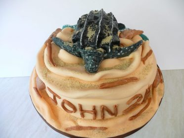 Leatherback turtle cake