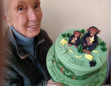 Dr Jane Goodall OBE Primatologist with her birthday cake. https://rootsandshoots.org