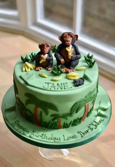 Primatologist chimpanzee birthday cake