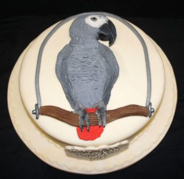 parrot-cake